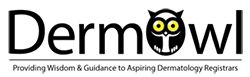DermOwl Logo